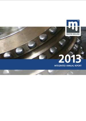 intergrated report 2013